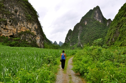 Getting lost in Mingshi