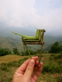 A horse made of ferns given to us by one of the Black Hmong women who walked with us