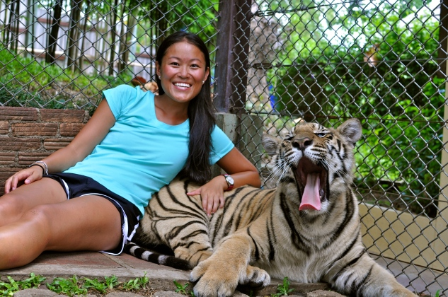 """Ting with a yawning """"small"""" tiger"""