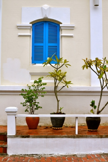 Potted plants outside the Belle Rive