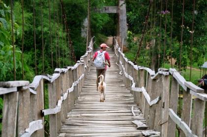 Solid bridge - Noi and Khaw