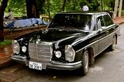 Many old luxury cars