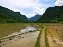 Our path through the rice paddies