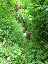 Noi hacking a path through the jungle for Ting